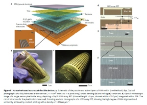 Flexibler Film mit Nanodrähten. Bild: Ali Javey and Kuniharu Takei, UC Berkeley/Nature